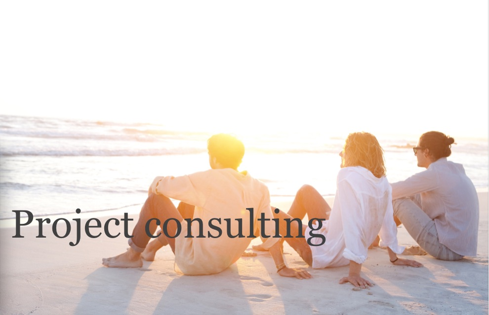 Project Consulting