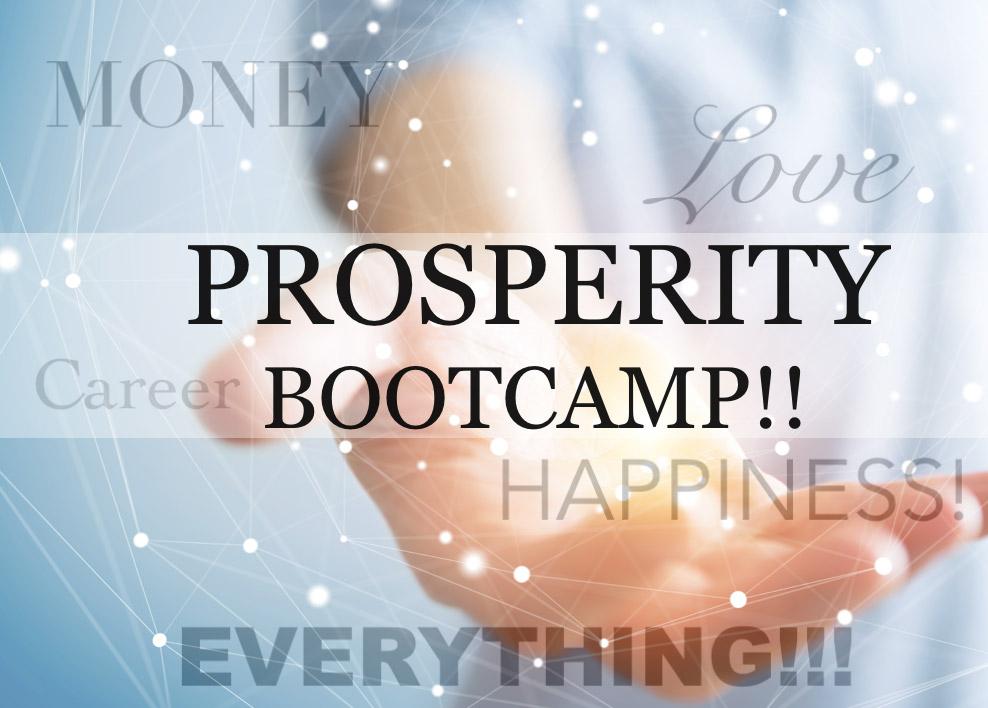 Prosperity Bootcamp